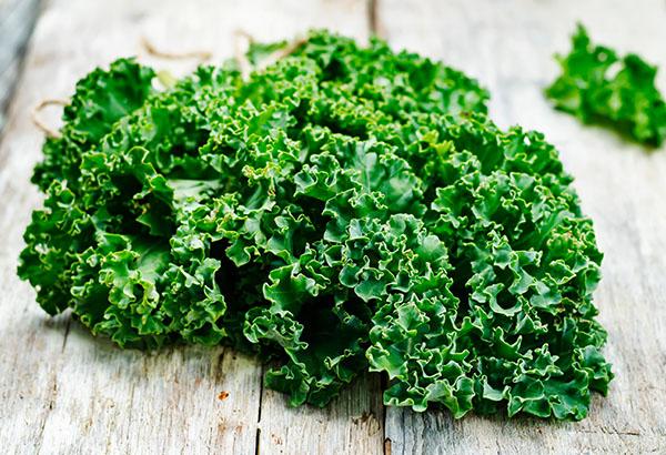 La kale o col rissada és un aliment ric en calci