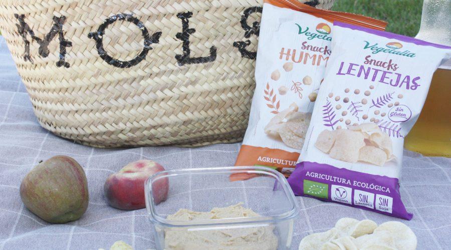 Idees per un picnic 100% vegetal